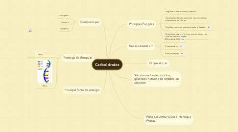Mind Map: Carboidratos