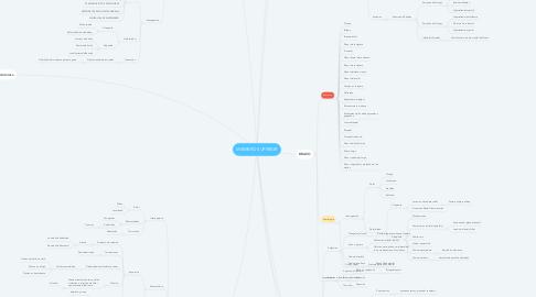 Mind Map: MIEMBRO SUPERIOR