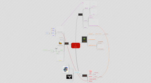 Mind Map: RIPLEY