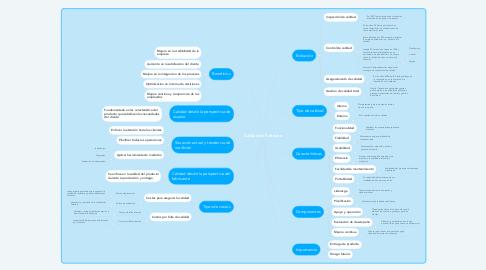 Mind Map: Calidad de Software