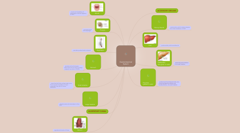 Mind Map: Gastrointestinal System