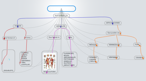 Mind Map: El Aparato Locomotor