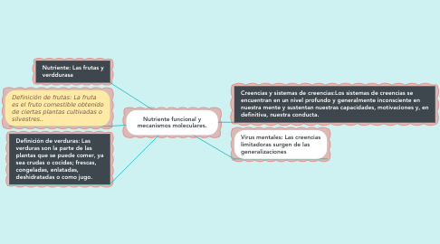 Mind Map: Nutriente funcional y mecanismos moleculares.