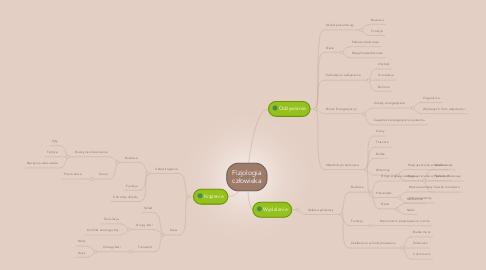 Mind Map: Fizjologia człowieka