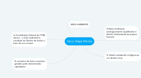 Mind Map: Novo Mapa Mental