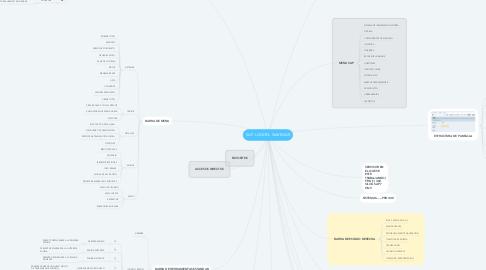 Mind Map: SAP. LOGON- NAVEGAR