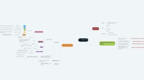 Mind Map: EL COS HUMÀ