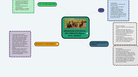 Mind Map: ORGANIZACIÓN SOCIAL EN CABALLOS (Equus ferus caballus)