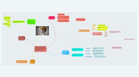 Mind Map: Transtornos do Neurodesenvolvimento