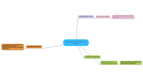 Mind Map: Management at different levels