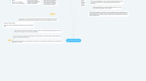 Mind Map: Tecidos basicos do corpo
