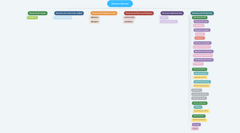 Mind Map: Director General