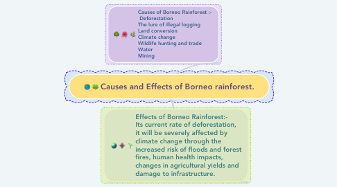 Mind Map: Causes and Effects of Borneo rainforest.