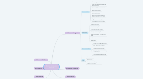 Mind Map: Dentes incisivos e caninos