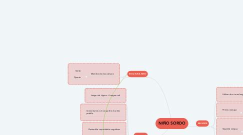 Mind Map: NIÑO SORDO