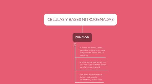 Mind Map: CELULAS Y BASES NITROGENADAS