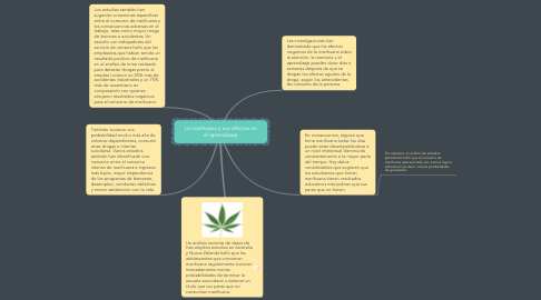 Mind Map: La marihuana y sus efectos en el aprendizaje