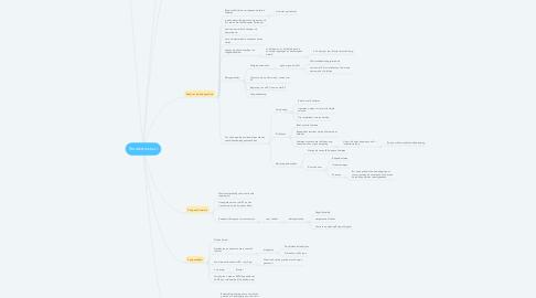 Mind Map: Staatsstructuur
