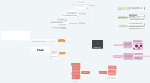 Mind Map: Adenovirus Vaccines (application for Covid-19)