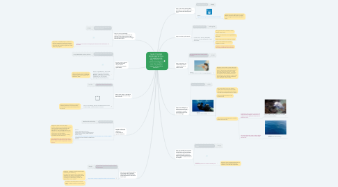 Mind Map: MAKE TOURISM MORE RESPECTFUL OF MARINE LIFE: Why and how can artificial intelligence save the negative impact of maritime tourism ?
