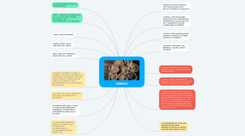 Mind Map: CEREALI