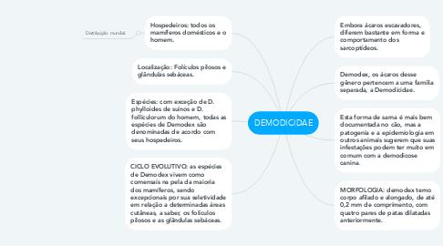 Mind Map: DEMODICIDAE