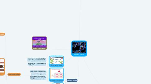 Mind Map: Genetics - Callum