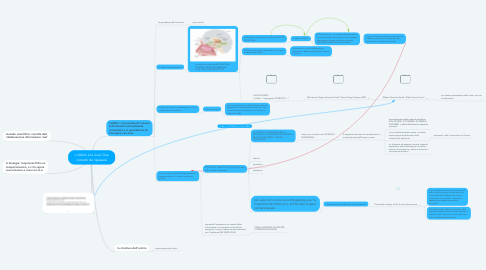 Mind Map: L'olfatto e la vista. Due concetti da ripassare