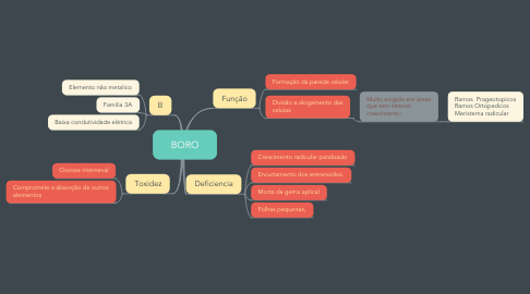 Mind Map: BORO