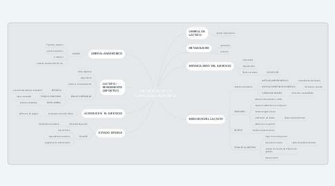 Mind Map: MEDICIÓN DE LA CAPACIDAD AEROBICA
