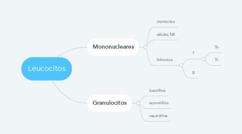 Mind Map: Leucocitos
