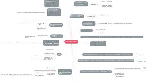 Mind Map: En la caverna Platónica