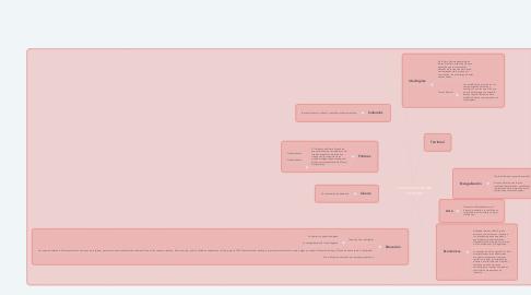 Mind Map: Características del Virreinato