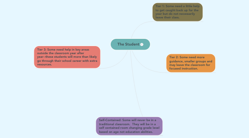 Mind Map: The Student