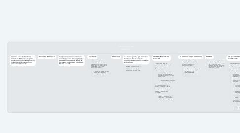 Mind Map: caracterización del virreinato.