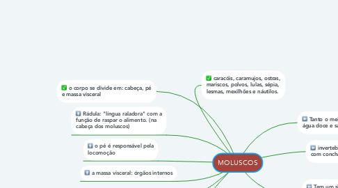 Mind Map: MOLUSCOS