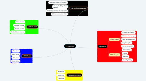 Mind Map: ATLETİZM