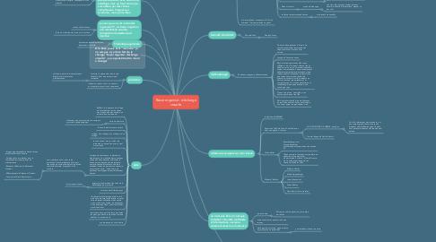 Mind Map: Bazar organisé : décharge visuelle