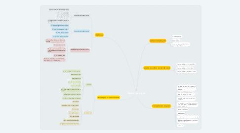 Mind Map: Métier du social