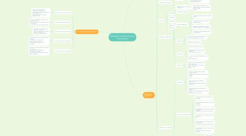 Mind Map: Politiques (méthodes) de la  maintenance