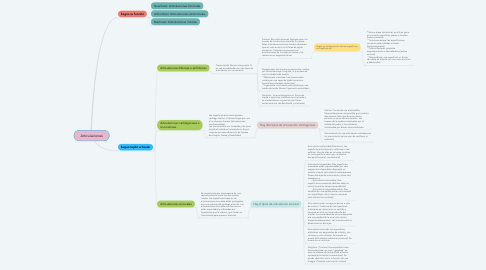 Mind Map: Articulaciones