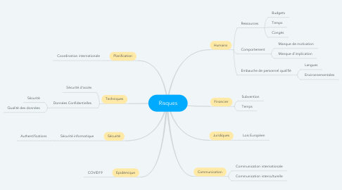 Mind Map: Risques