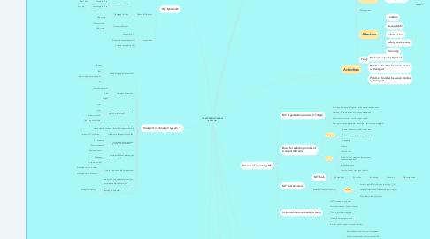 Mind Map: OPERATING MULTIMODAL TRANSPORT