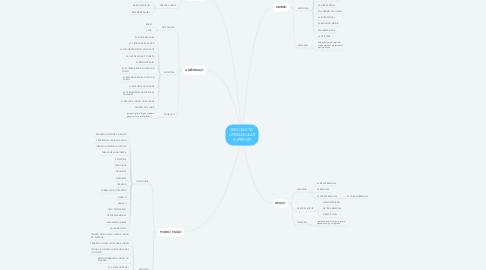 Mind Map: ESQUELETO APENDICULAR SUPERIOR