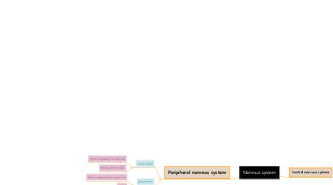 Mind Map: Nervous system