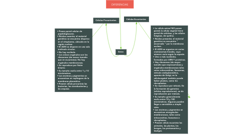Mind Map: DIFERENCIAS