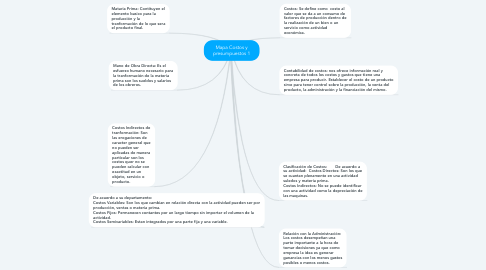 Mind Map: Mapa Costos y presumpuestos 1
