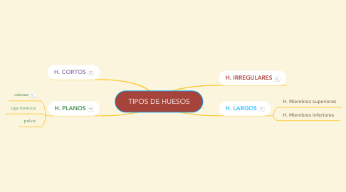 Mind Map: TIPOS DE HUESOS