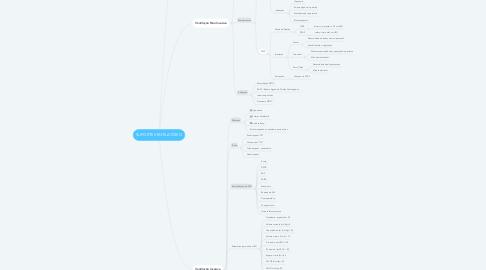 Mind Map: SUPORTE VENTILATÓRIO