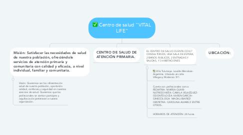 """Mind Map: Centro de salud """"VITAL LIFE"""""""